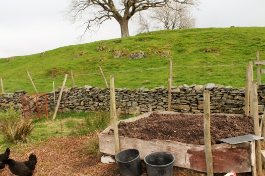 new raised bed in the orchard