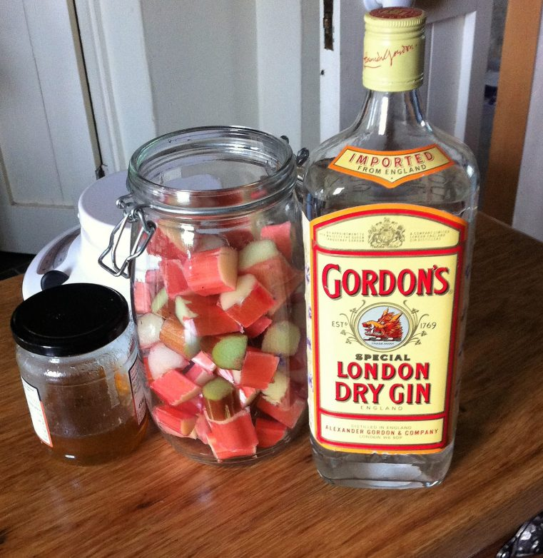 ingredients for rhubarb gin