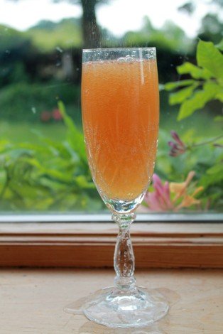 ginger and rhubarb cordial with prosecco