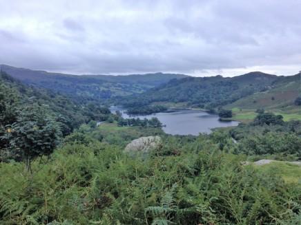 lakeland view