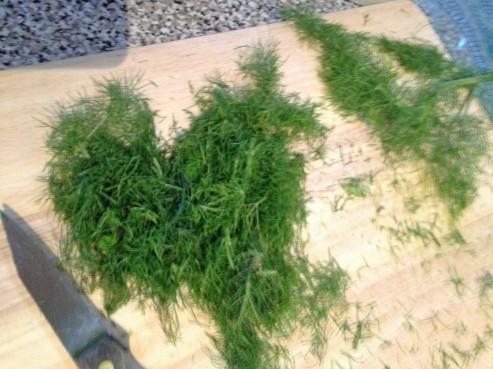 chopped fennel