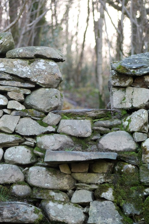 stile into craggy wood