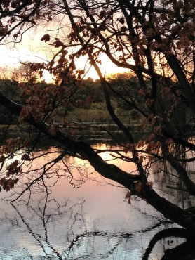 sunset over the tarn