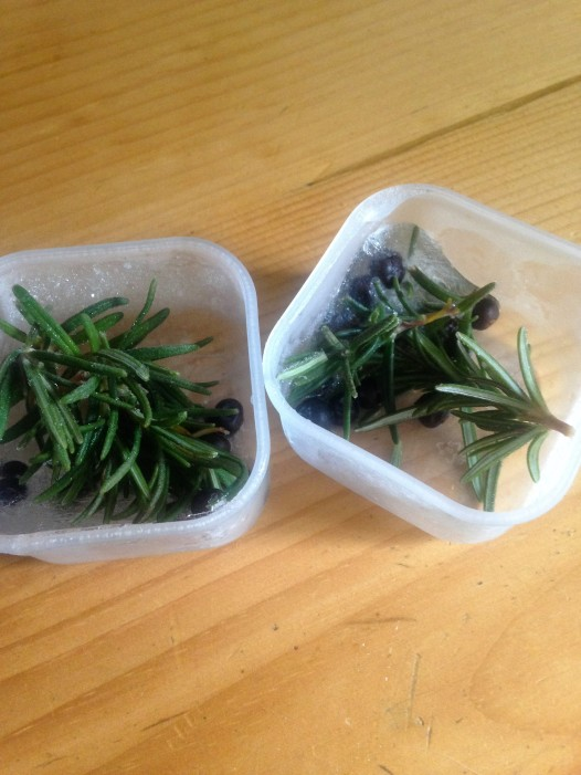 Rosemary and juniper berry ice cubes