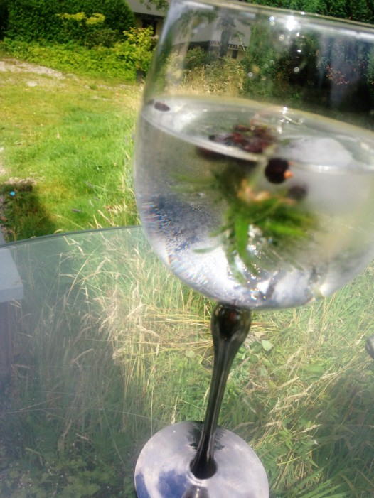 G&T with frozen rosemary and unier berries