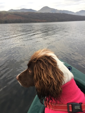Ellie on Coniston