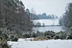 tarn in the snow