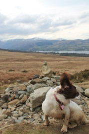 Ellie getting blown around at Ullswater
